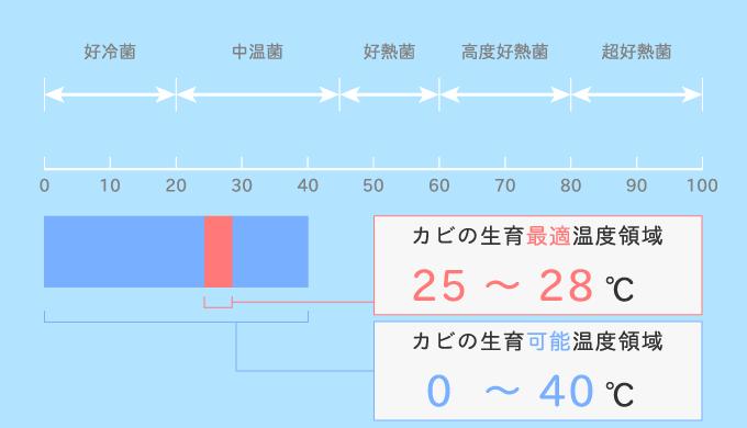 カビと温度の関係