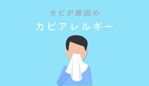 カビのアレルギーは4つ!気管支ぜん息・アレルギー性鼻炎・アトピー性皮膚炎・過敏性肺炎